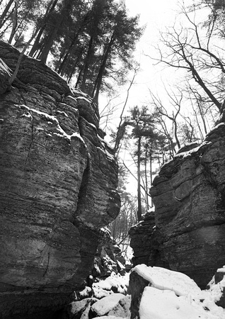 Canyon, Parfreys Glen