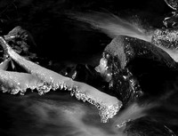 Icy Branch And Rocks, Parfreys Glen